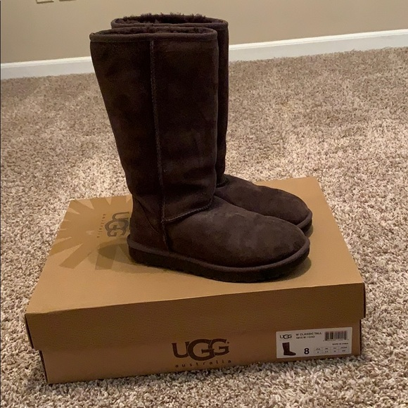 UGG Shoes - Chocolate Brown Classic Tall Uggs